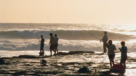 Coastal fishing at Muriwai Beach on Auckland's west coast.