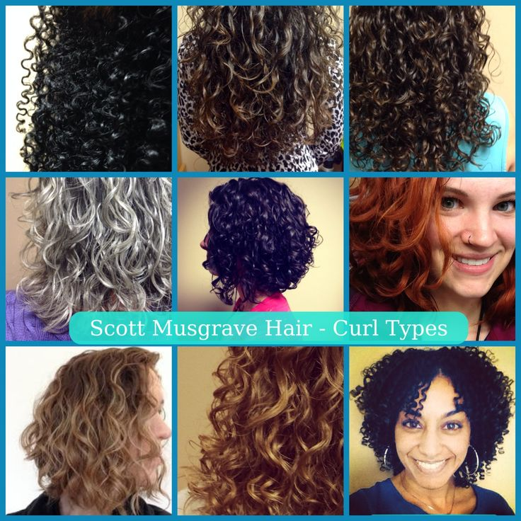 Scott Musgrave Hair curl types I work with most Types of curls Curly hair styles naturally