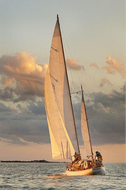 sailing Cape cod.jpg | Flickr - Photo Sharing!
