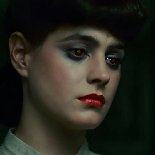 Sean Young as Rachael in Blade Runner, Dir. Ridley Scott (1982). Face inspiration for Adina.