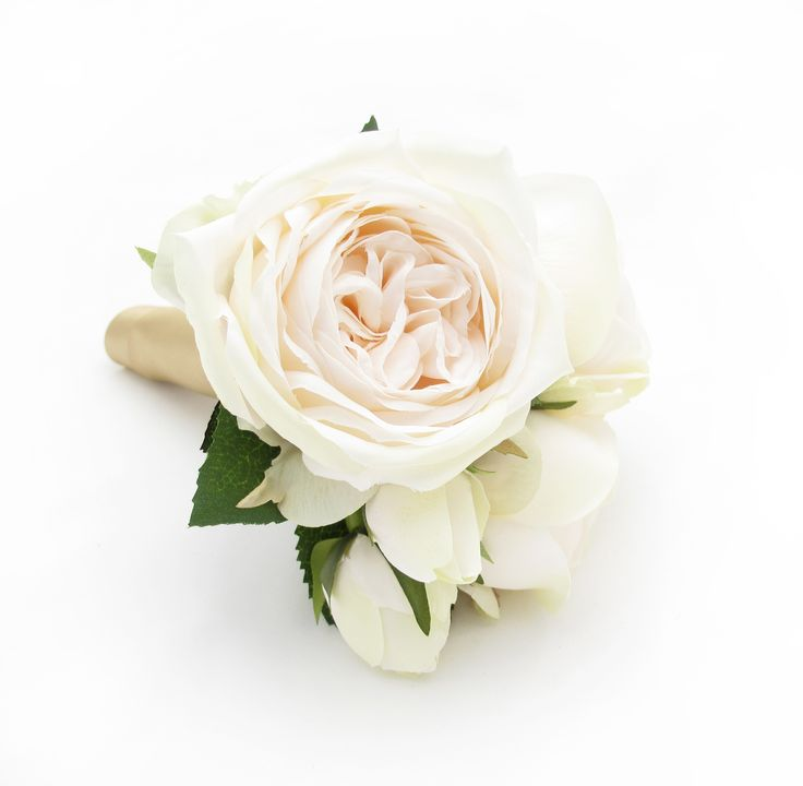A tiny posy of champagne Paris Roses bound with gold satin ribbon. Find your perfect wedding flowers at http://www.loveflowers.com.au