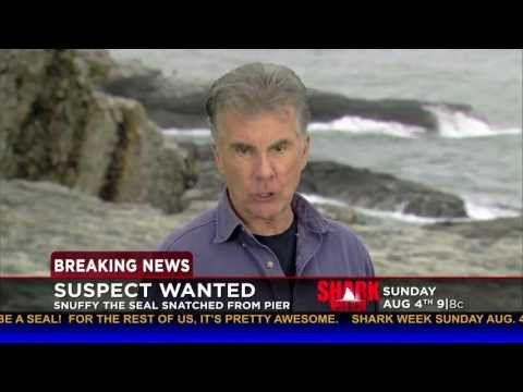 John Walsh on Snuffy's Disappearance   Shark Week 2013