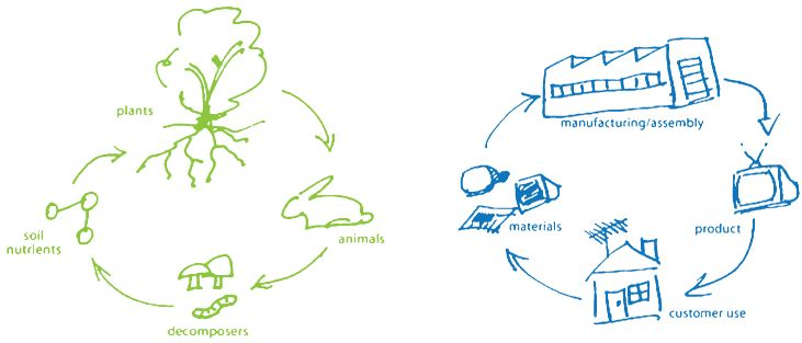 MBDC | Cradle to Cradle Design - Useful info about sustainable and green companies.