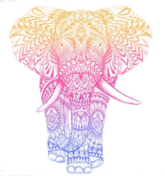 Elephant Drawing Colorful Summer Handdrawing
