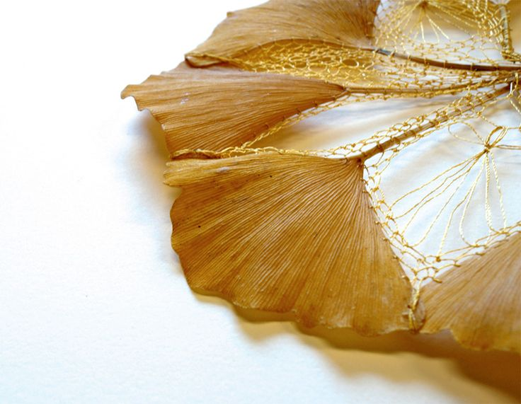 Artist Hillary Fayle (previously) continues her exploration of embroidered plantlife using elegent stitching to create amalgams of leaves and seeds. Ginkgo leaves and maple tree seeds are sutured into tight geometric forms, while other pieces play with negative space as Fayle deftly cuts patterns