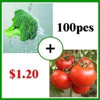 Стимулирование сбыта!  100 китайских UNIDs овощных семян семян брокколи 50 единиц и 50 единиц помидоры семена овощных культур