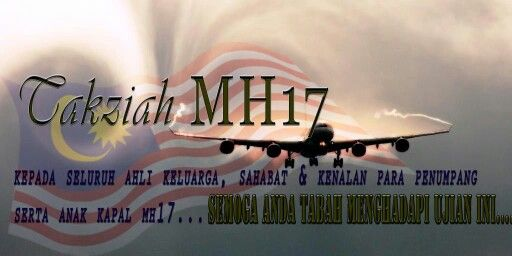 Pin on Vlucht MH17