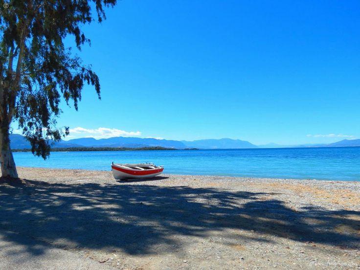 A boat having sun baths in Kavos, long beach in Evia