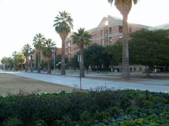 University of Arizona, Tucson, AZ