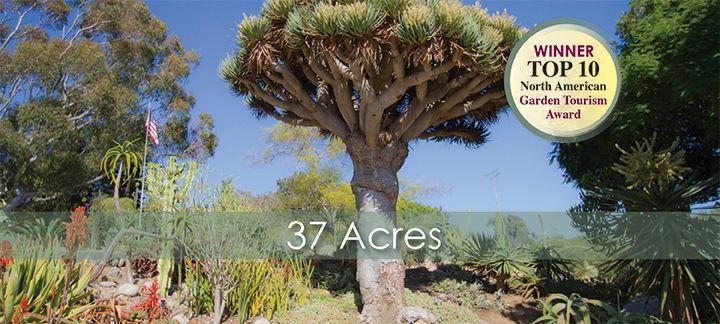 a398ba2fb58e09e89e3f0228d6b62e1a - San Diego Botanical Gardens Free Tuesday