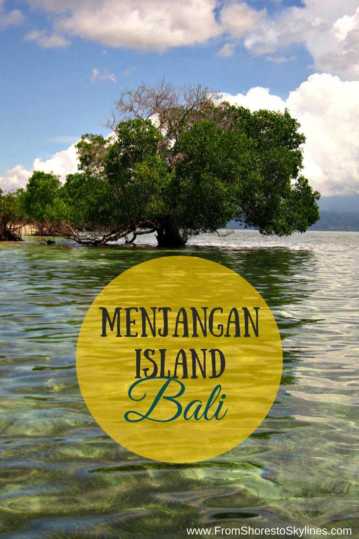 Menjangan Island in Bali, fantastic diving and snorkeling right off the coast of a deserted island!