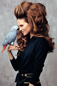 a couple of glam birds: Hilary Swank, Hairstyles, Bighair, Hair Styles, Makeup, Big Hair, African Grey, Beauty