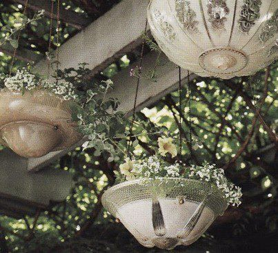 Old light fixtures turned into hanging planters...Very pretty!