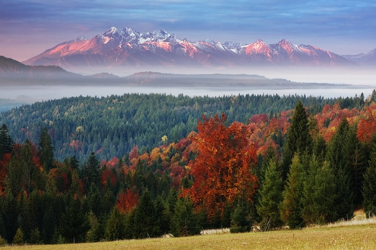 autumn view on Tatry   Beskid Sadecki
