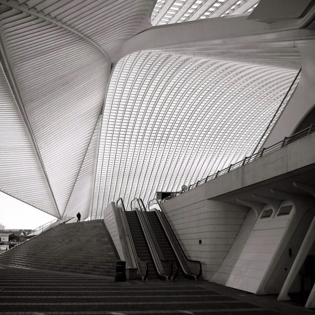 Airport: Railway Station, Train Stations, Santiago Calatrava, Belgium, Architecture, Photo