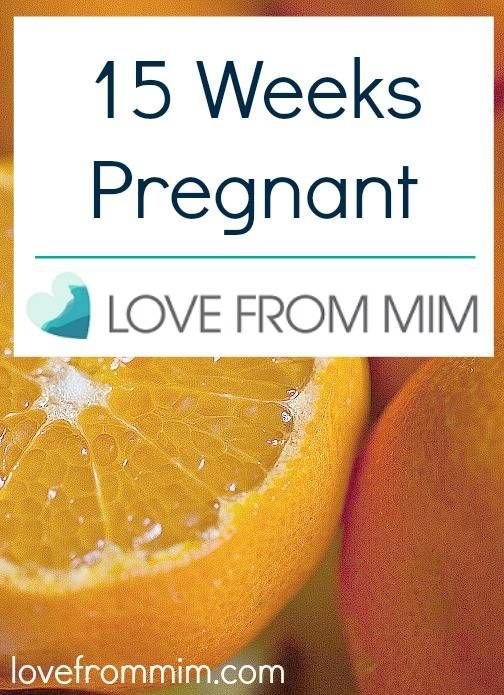 15 weeks of pregnancy – www.lovefrommim.com 15 weeks of pregnancy monitoring Pregnancy Sympt …   – Pregnancy Stuff