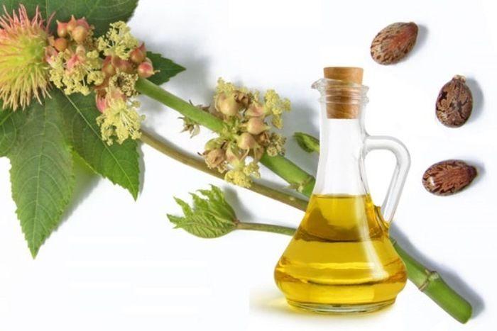 ひまし油(海外ではキャスターオイル)とは、「ヒマ」または、「トウゴマ(唐胡麻)」と呼ばれる植物の種を、圧力をかけて絞り、抽出したオイルのことで、紀元前4000年の頃にはエジプトで美容のオイルとして使われていたことがわかっています。 基本的には、コールドプレス、冷搾法、常温絞りなどの「低温圧縮製法」で作られます。 色は薄い黄金色で、独特の香りがあり粘度が高く、ねっとりとした性質のオイルです。 酸化しにくく、品質を保ちやすく、体にも肌にも優しいのですが、肌に用いる場合は、オイルの粘度に加え、浸透のし難さを不快に感じる方もおります。