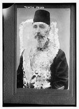 A Vizier is a Muslim high official, more often than not from the Ottoman Empire.