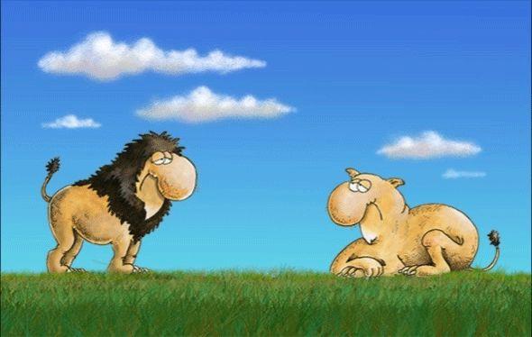 Ξυπνάς μέσα μου το ζώο | αρχικη, αρκας εν κινησει | ethnos.gr