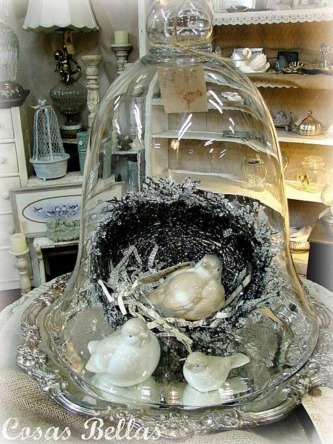 sweet nest under glass