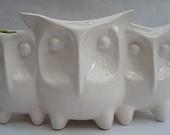 Trio of owls planter or vase
