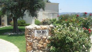 Tzora Winery, Israel