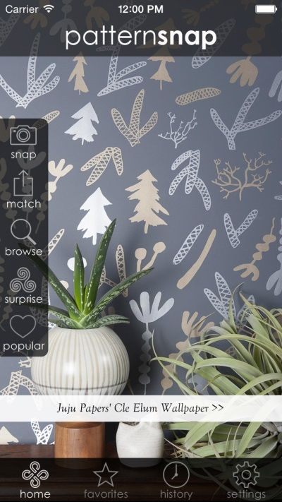 12.12.14 - Today's Featured pattern is Juju Papers' 'Cle Elum' Wallpaper