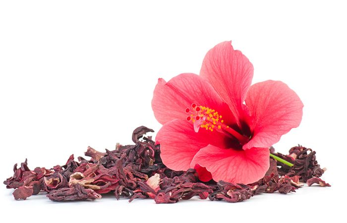 10 Causes Of White Hair And 12 Ways To Prevent It Naturally Hibiscus Hair Growth Spray