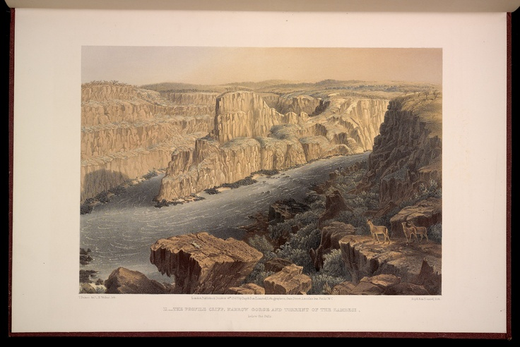 Plate 11: The Profile Cliff, Narrow Gorge and Torrent of the Zambeshi, below the Falls.