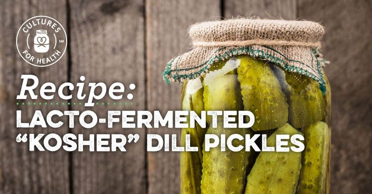 """Lacto-Fermented """"Kosher"""" Dill Pickles"""