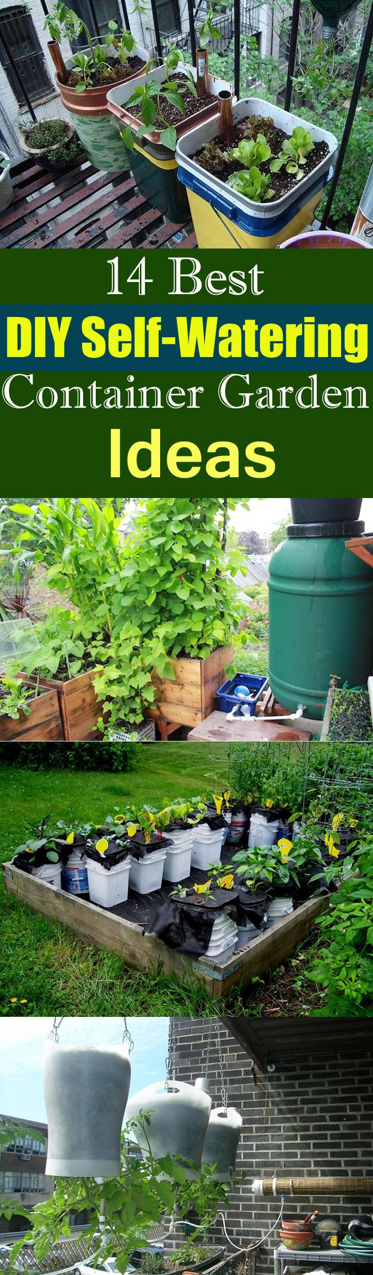 If you forget to water your plants due to a busy schedule, check out some of the best DIY self-watering container garden ideas.