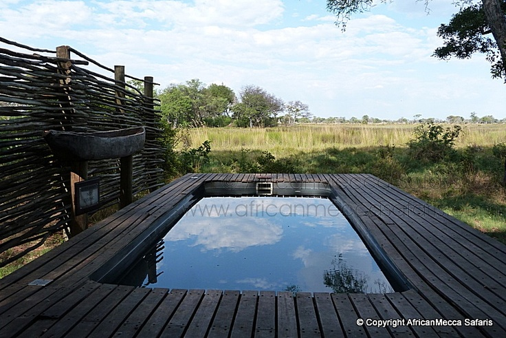 Xudum Lodge - Okavango Safaris - Picasa Web Albums