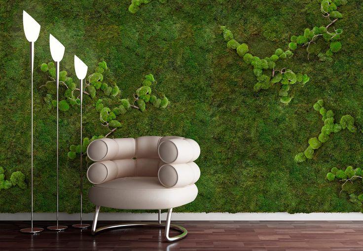 Grønt er godt for øjet! Mos-paneler er ved gøre sin indtog i Danmark. Panelerne er super velegnede til kontorer, og private hjem, hvor man ønsker at skabe et flot grønt miljø. Og så er de selvfølgelig lydabsorberende. Panelerne leveres fra førende udlandske gartnerier. Mosset udmærker sig ved at det ikke kræver vanding eller anden vedligehold. Da mosset ikke skal gro, behøver panelet ikke lys som plantebilleder eller vægge normalt kræver. Panelerne er iøvrigt meget lette.