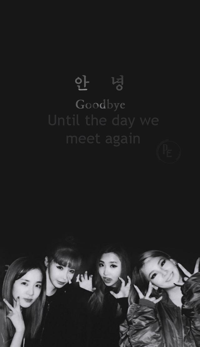 2ne1 - Goodbye - miss you queens