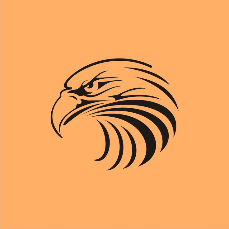 High Quality Eagle Vector Design, High Quality Eagle Vector Designer, High Quality Eagle Vector Designs, High Quality Eagle Vector Design Services, High Quality Eagle Vector Design Services in Chennai.