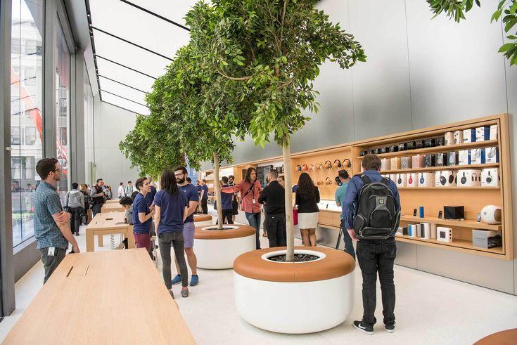 Genius Grove @ Apple Store San Francisco Union Square