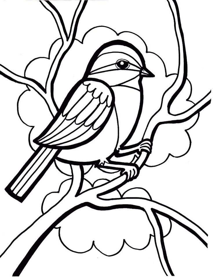 Sparrow Bird Coloring Page Kids Coloring Pages