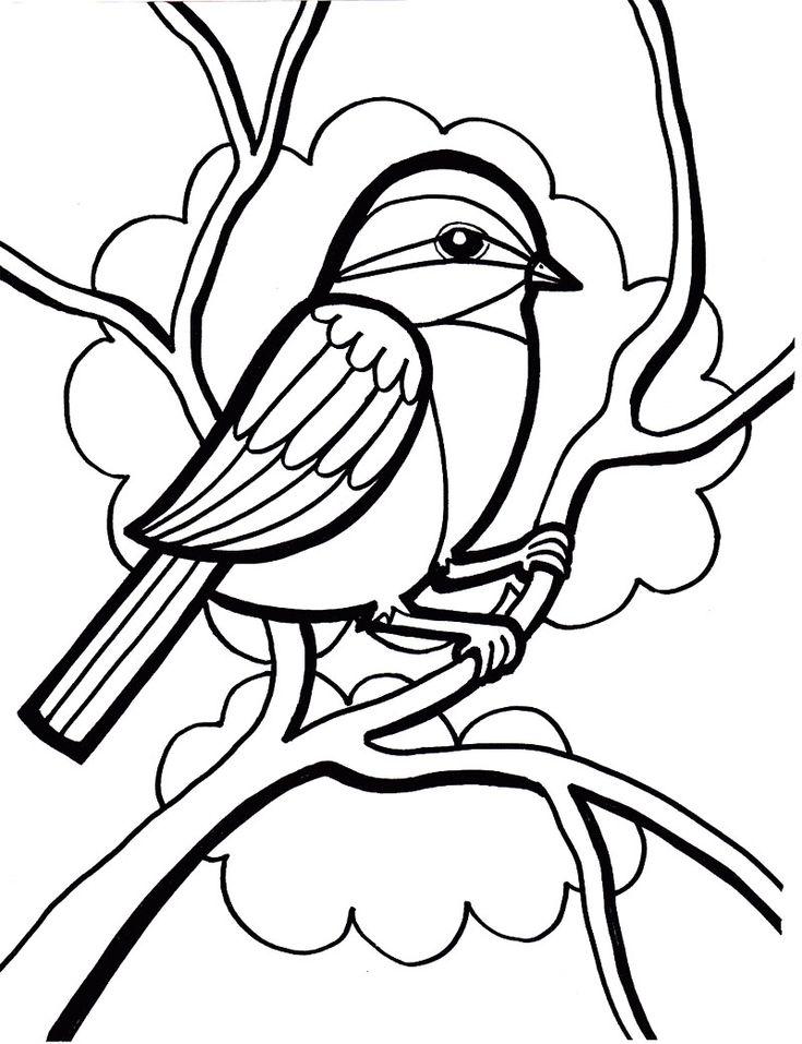 cockatiel bird coloring pages - photo#43