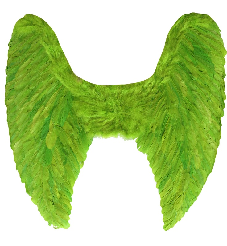 Картинки зеленые крылья