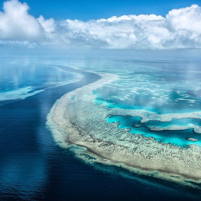Probably one of the most beautiful aerial photos of the Great Barrier Reef ever. Photo by @chadcopeland