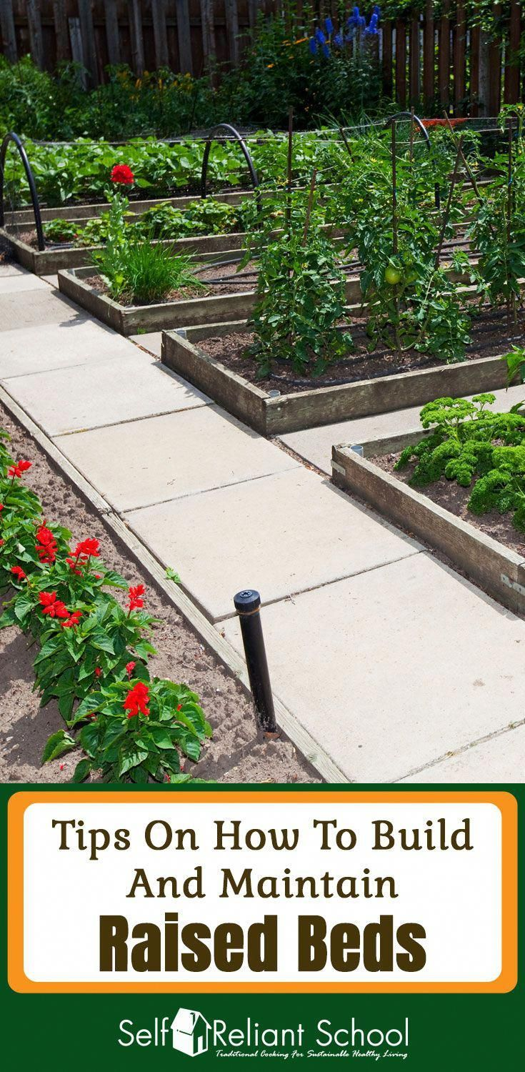 Raised Beds Are A Flexible And Widespread System Of Growing A