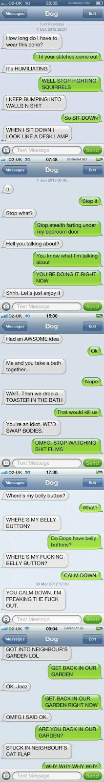 Top 10 Funniest Text Messages ft. Funny Dogs