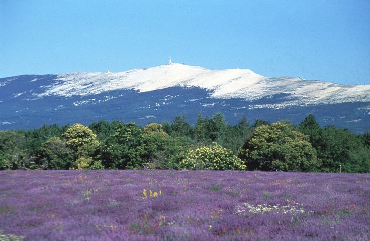 Le Mont-Ventoux - Provence France This was the view from my Gite...