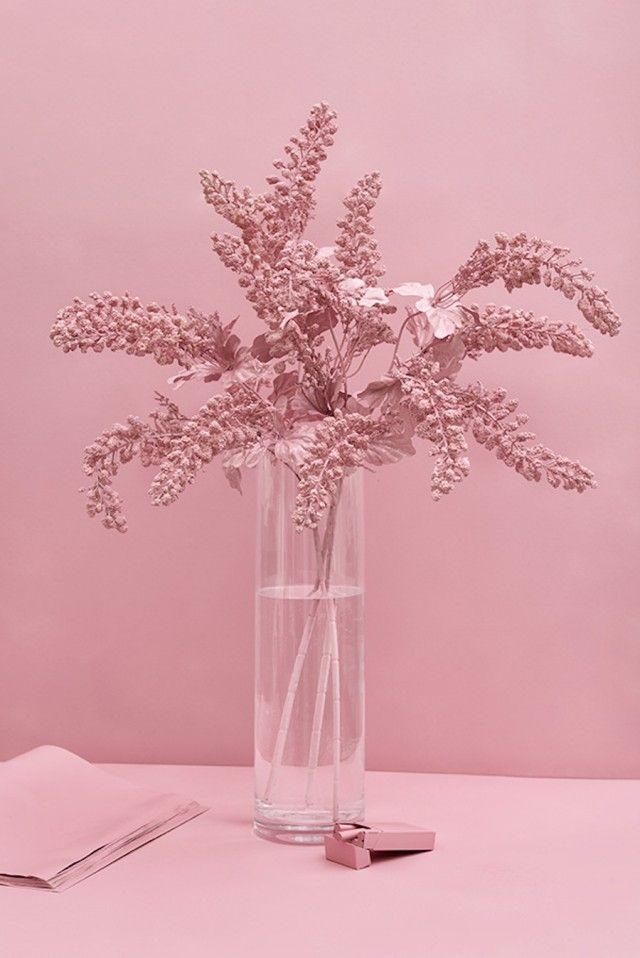pinkmonochrome-2