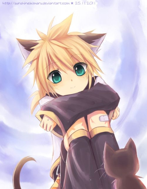 anime boy neko | RP] Flower boy and the neko shop [Beg] : Role Play! - Archives