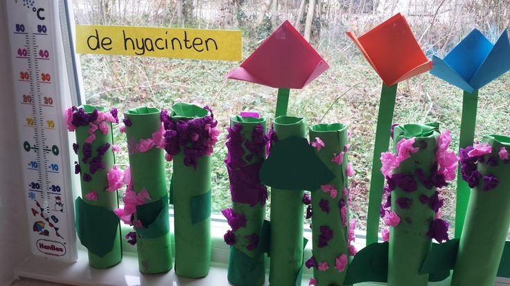 Hyacinten.