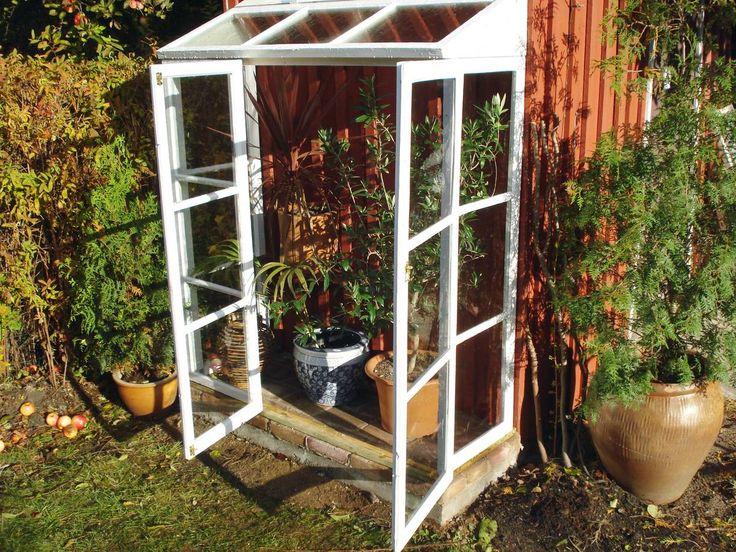 Bygg ditt eget växthus - använd gamla fönster