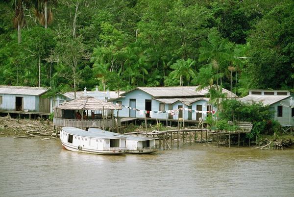 Amazon Rainforest, Cabo Orange National Park, near Oiapoque