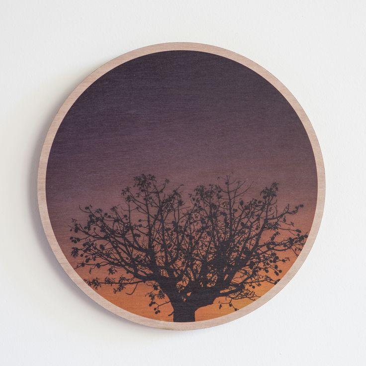 Jo Ward Photography -  Boab Sunset.  Boab silhouette against a Broome Sunset 290 mm diameter image printed directly onto marine grade plywood using UV print technology. Comes complete with a ready to hang aluminium wall mount system $70