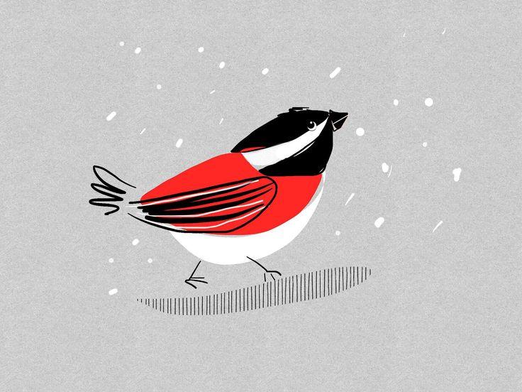 Ptak | Bird | ©Katarzyna Krasowska 2015